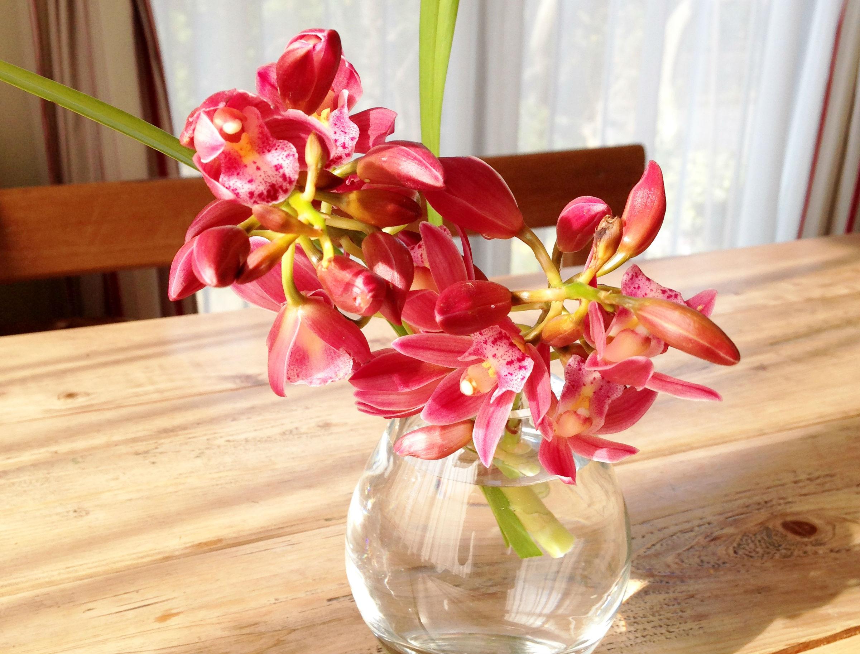 花を飾れない3つの理由と飾ると得られる3つのメリット